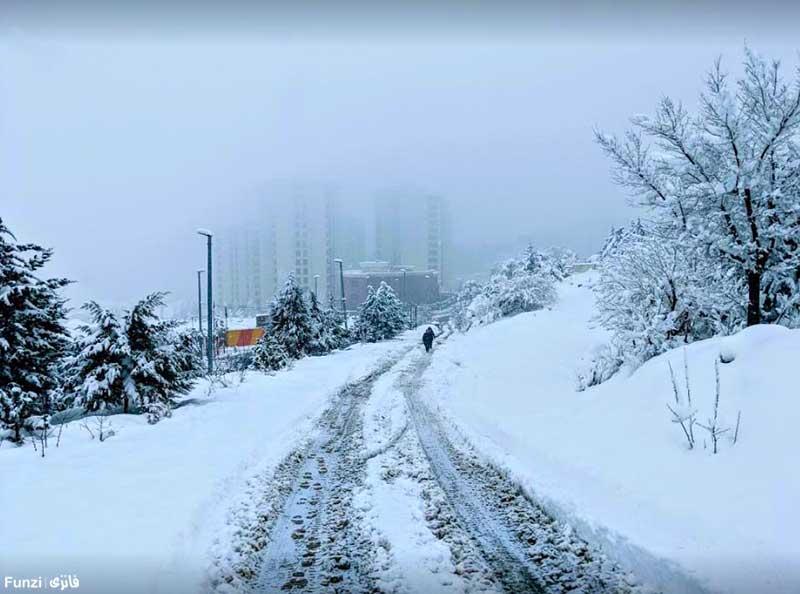 پارک جنگلی سوهانک در زمستان