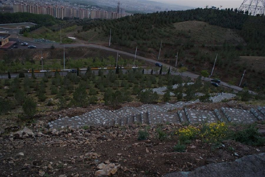 پارک جنگلی کوهسار