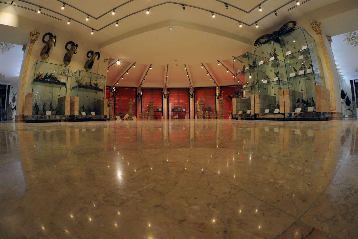 موزه حیات وحش داراباد