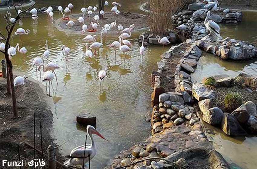 باغ پرندگان در عید نوروز