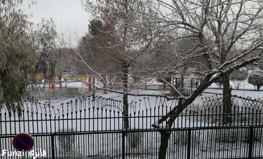 پارک بهمن در نازی آباد