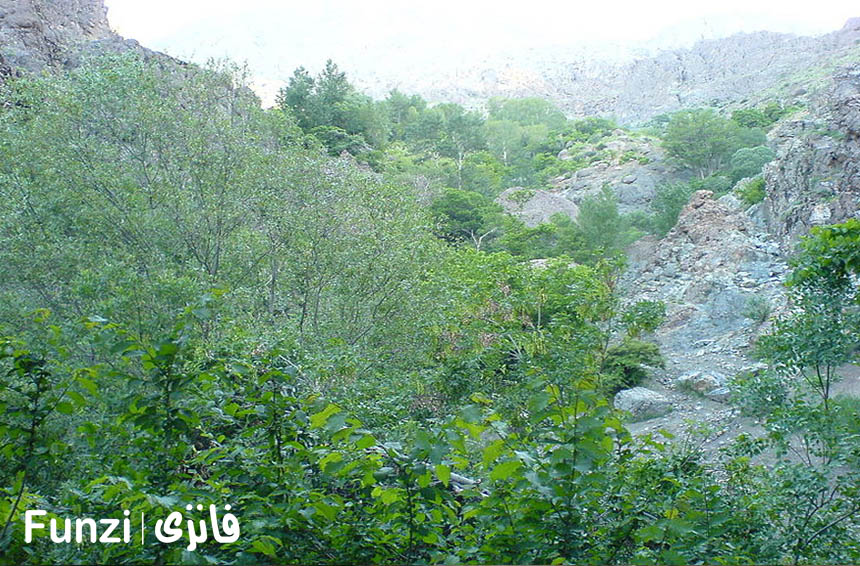 آدرس بوستان گلابدره تهران