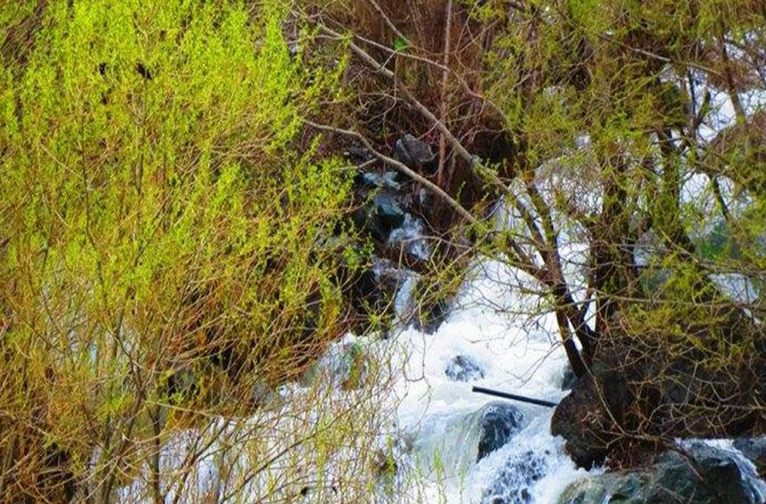 طبیعت درکه تهران