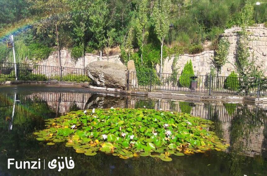 برکه های پارک آبشار تهران