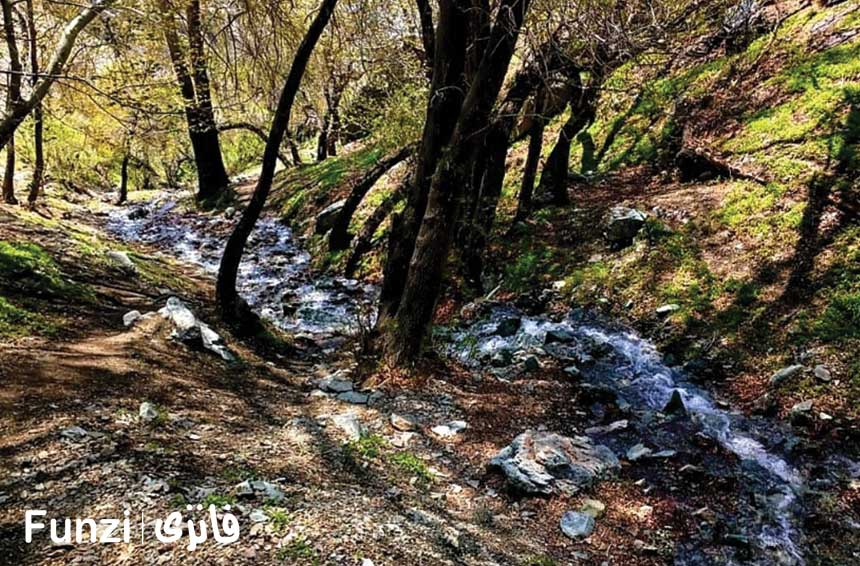 مسیرهای قله چین کلاغ