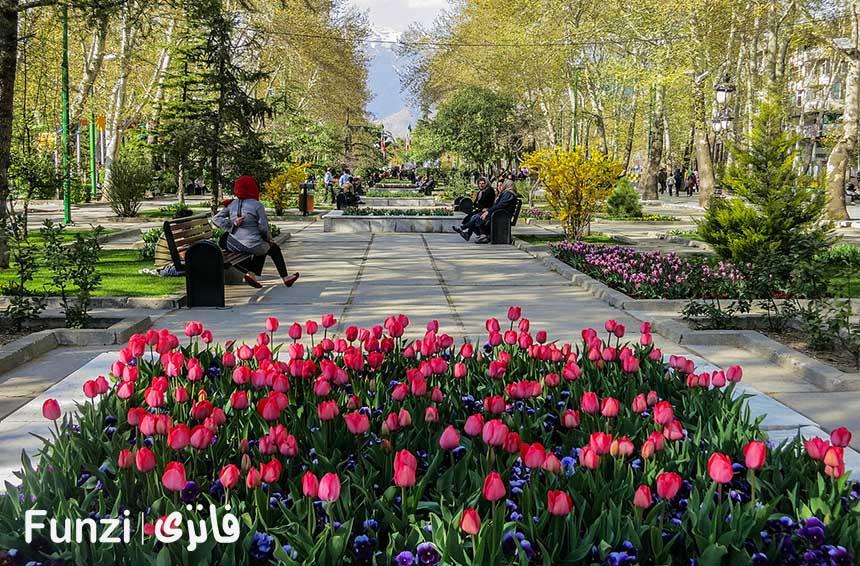 پارک ملت | جاذبه های اطراف مجتمع كامپيوتر پايتخت
