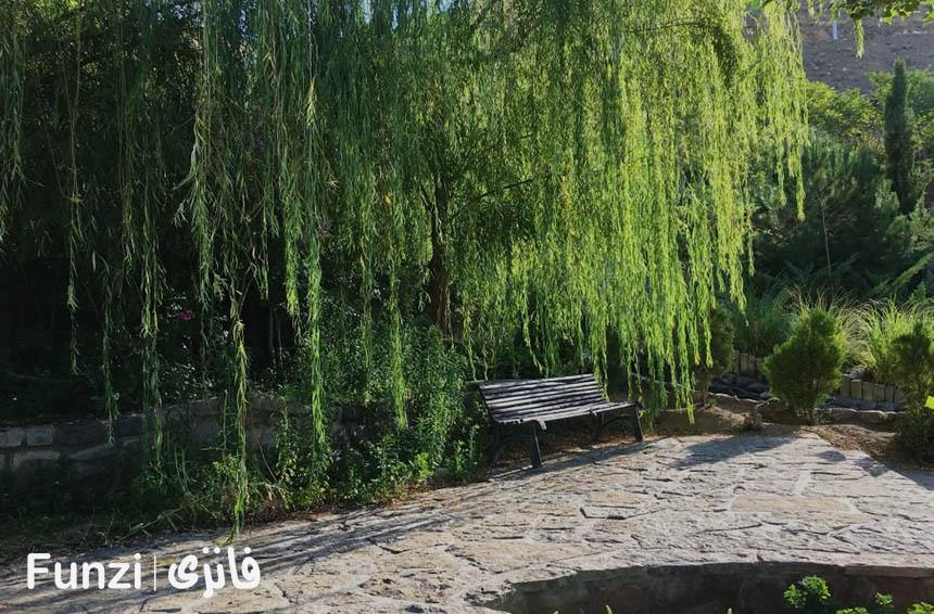 عکاسی در پارک آبشار