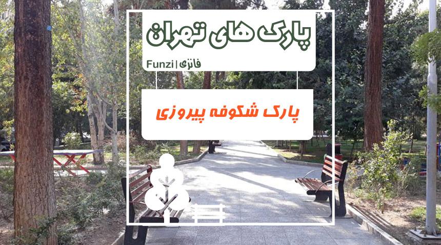 پارک شکوفه پیروزی تهران فانزی