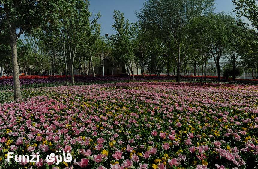 پارک هرندی شوش تهران funzi