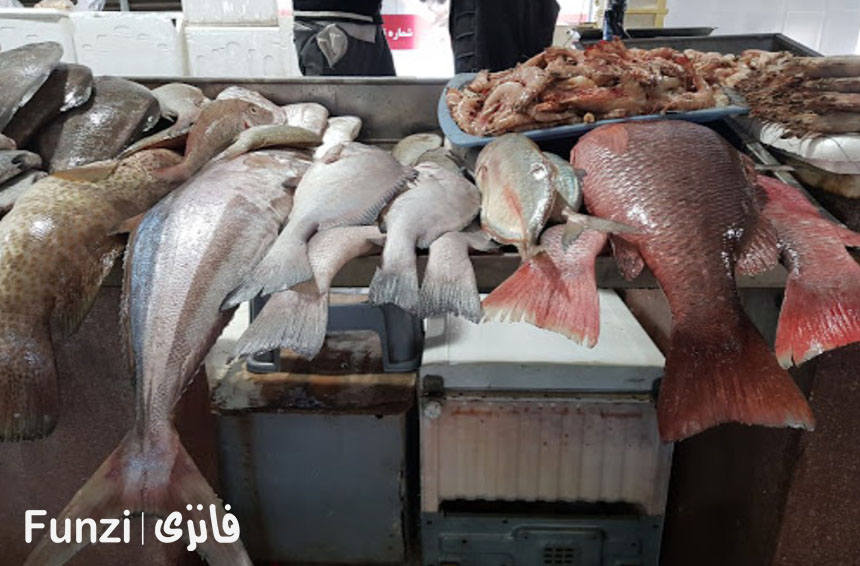 انواع ماهی های خوراکی کیش در بازار ماهی فروش های کیش فانزی