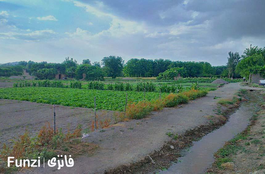 پارک جنگلی ناژوان اصفهان کجاست فانزی