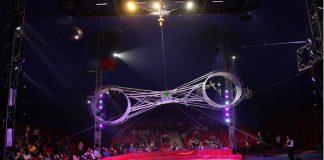 سیرک در ایران