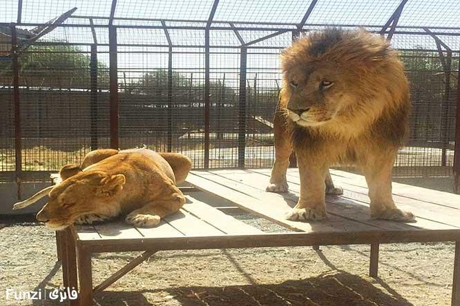 باغ وحش صفادشت ملارد