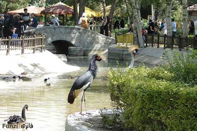 باغ پرندگان شهر اصفهان | پارک پرندگان اصفهان
