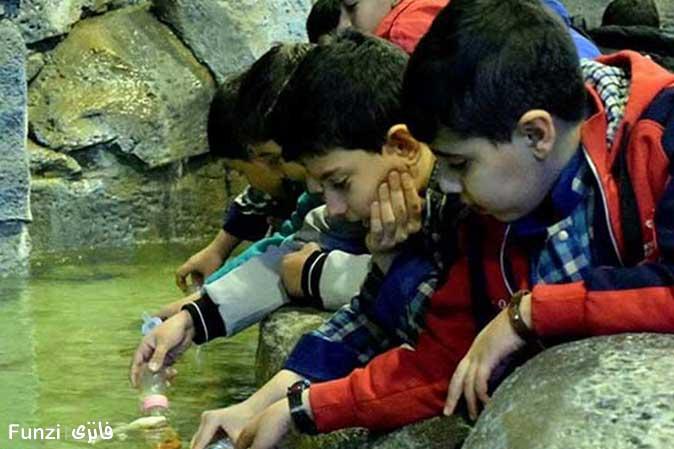 ماهی آکواریوم اصفهان