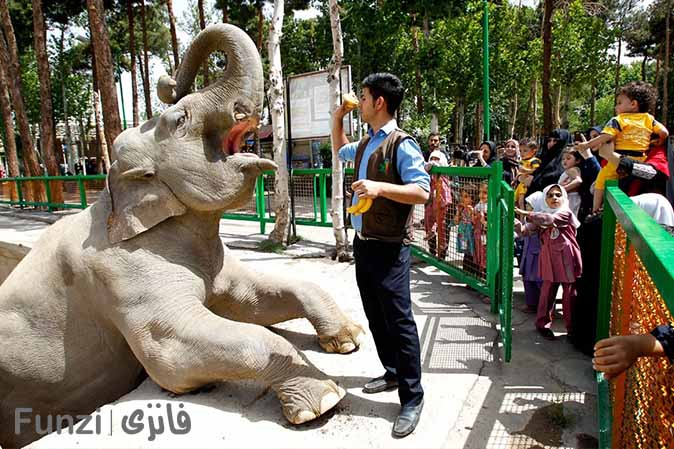 باغ وحش ارم تهران |تفریحات هیجان انگیز در تهران
