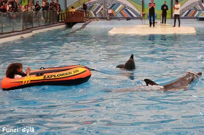 قایق سواری با دلفین ها در دلفیناریوم برج میلاد
