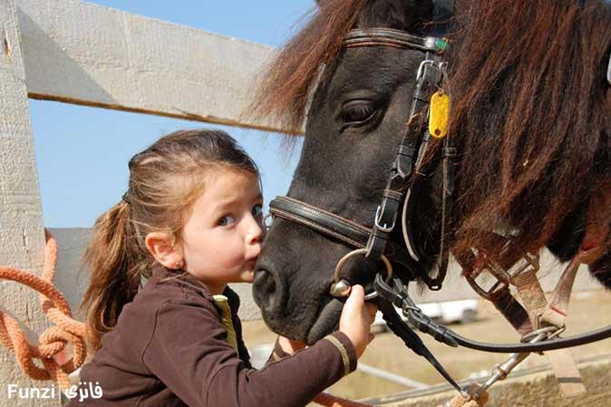 آموزش سوار کاری به کودکان   آموزش اسب سواری