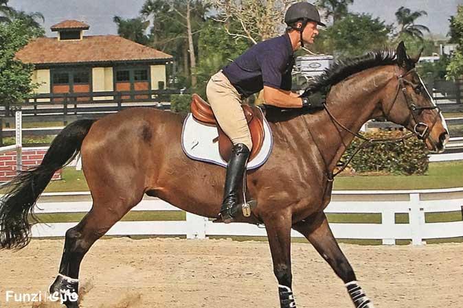 خم شدن روی اسب در آموزش سوار کاری   آموزش اسب سواری